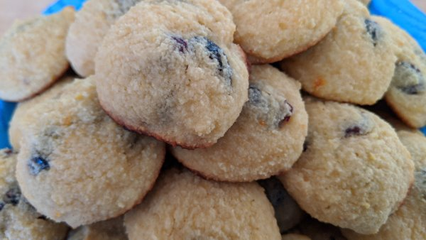 Orange Cranberry Keto Cookies